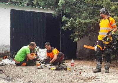 equipo trabajando